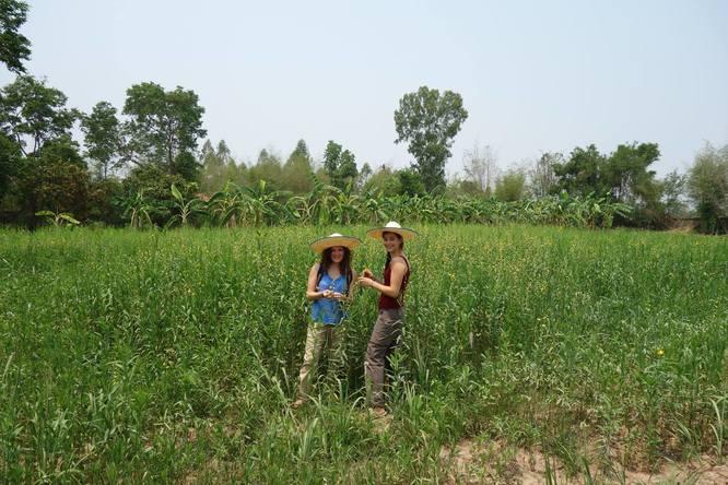 Aurélia et Laura - Thaïlande