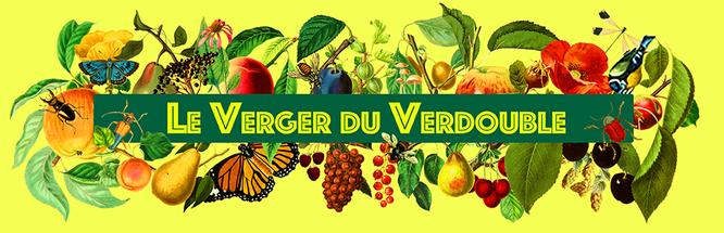 Le_verger_du_verdouble_jaune.png