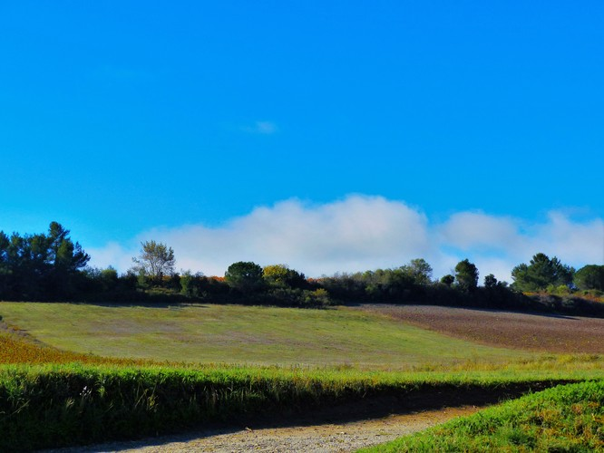 Aragon_16.jpg