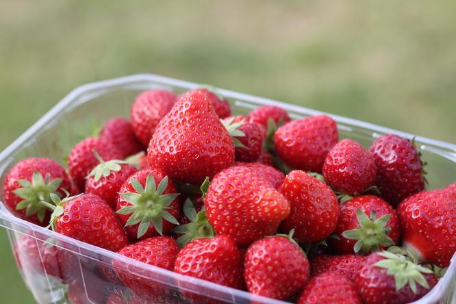 fraisesbarq.jpg