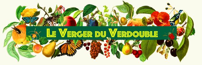 Le_verger_du_verdouble_blanc.png
