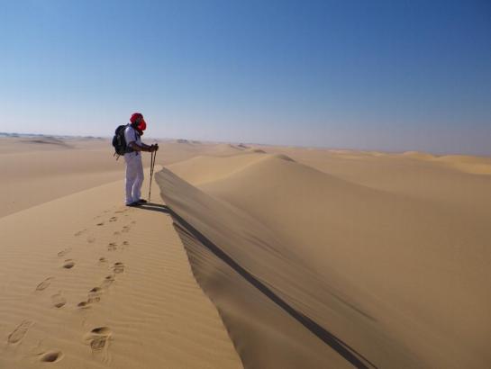 laid_desert.PNG
