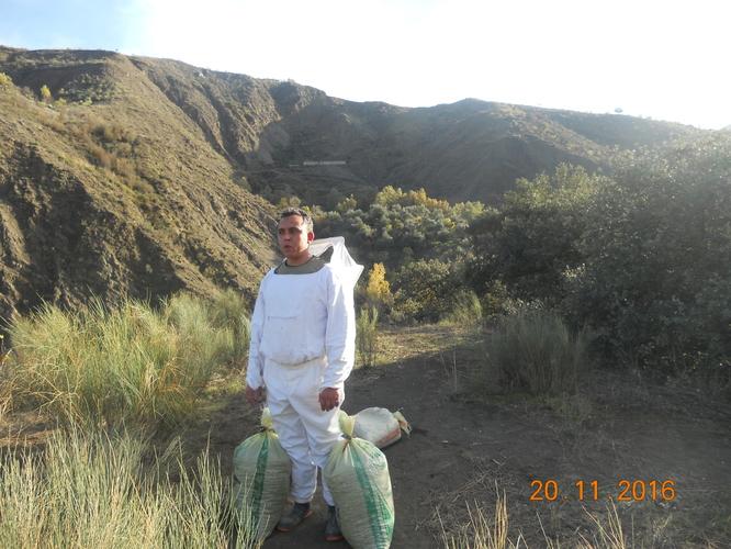 Il faut débroussailler régulièrement les abords des ruches pour le confort des abeilles.