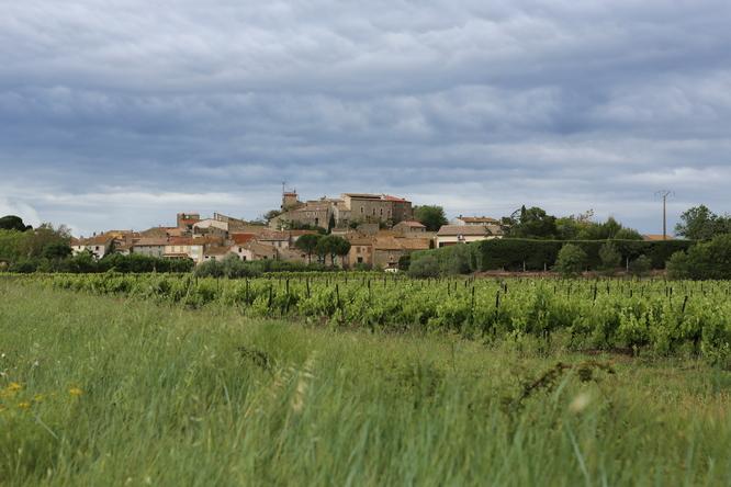 Le village de Pouzols-Minervois