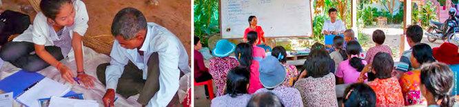 conseiller, producteur, information marché au Cambodge (Agrisud)