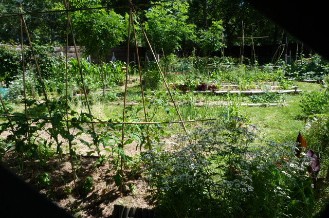 Les Jardins Naïfs sont nés !