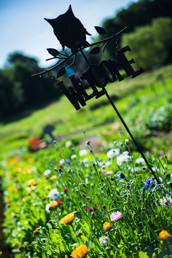 jardin de Muriel