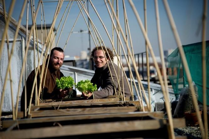 Les cofondateurs de Topager sur les toits d'AgroParisTech