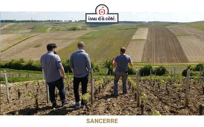 Visite des Vignobles Georges Millérioux et fils à Sancerre, l'un de nos futurs partenaires.