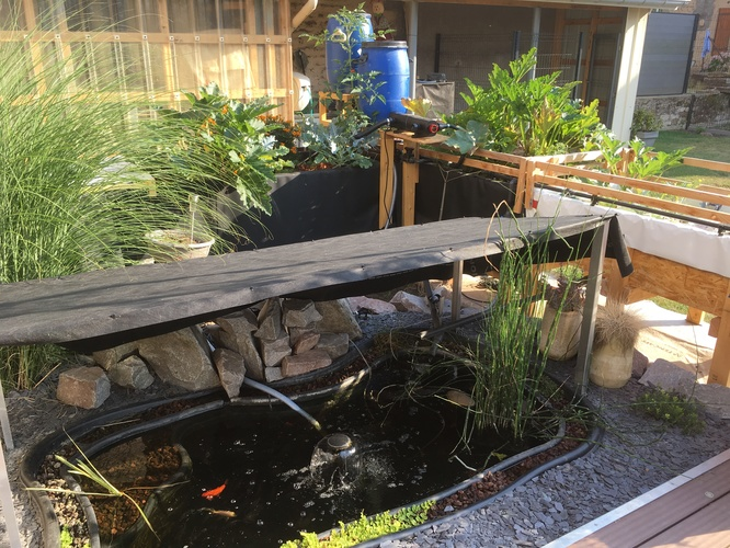 Système aquaponique prototype : vue d'ensemble
