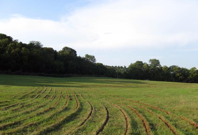 Traçons les sillons d'une agriculture régénérative pour les sols