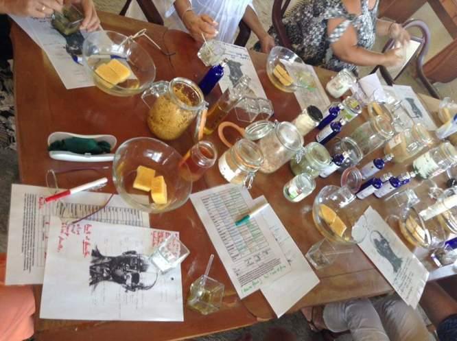 atelier de groupe faire cosmétique végétale