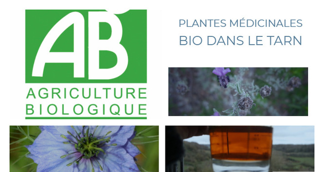 Plantes médicinale bio Tarn