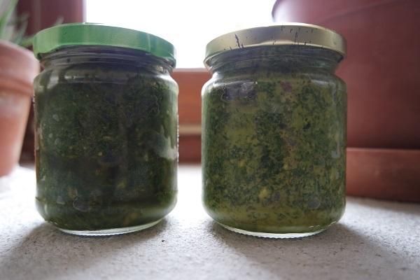 Pesto de plantes sauvages