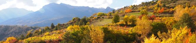 Lumière d'automne sur le Coteau de la Font d'Eygliers