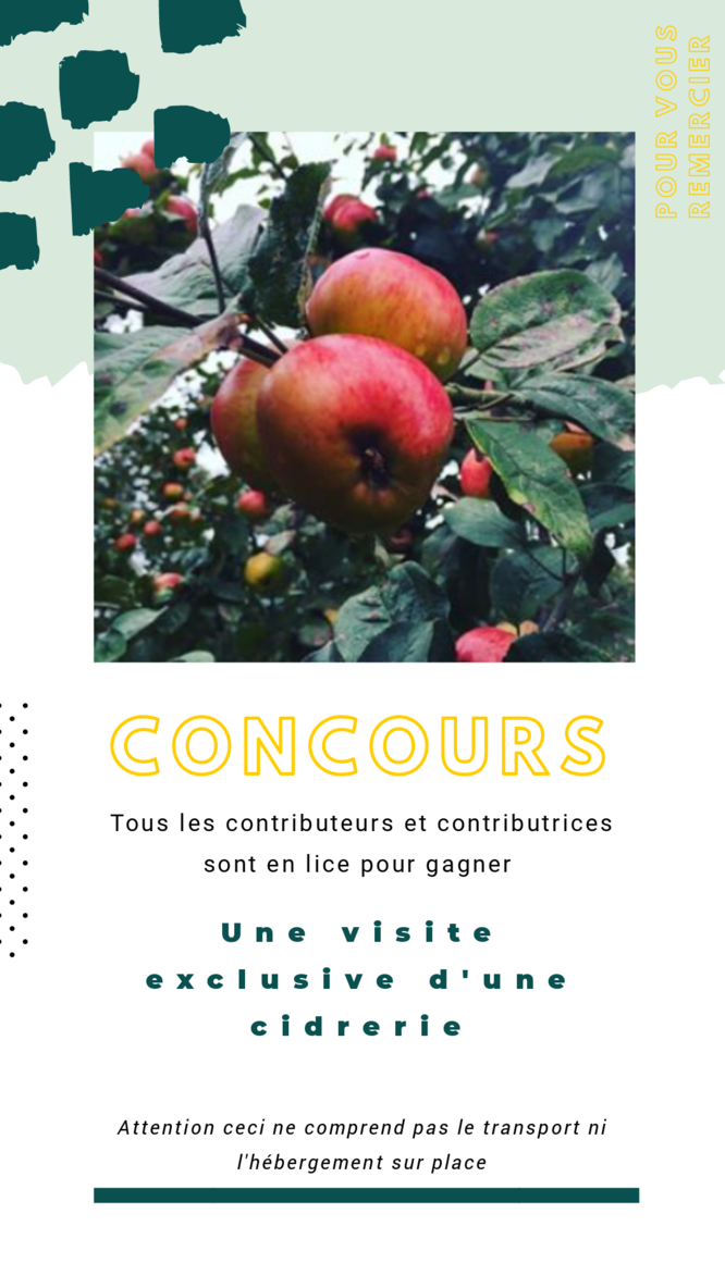 Calyce Cider Bar crowdfunding concours
