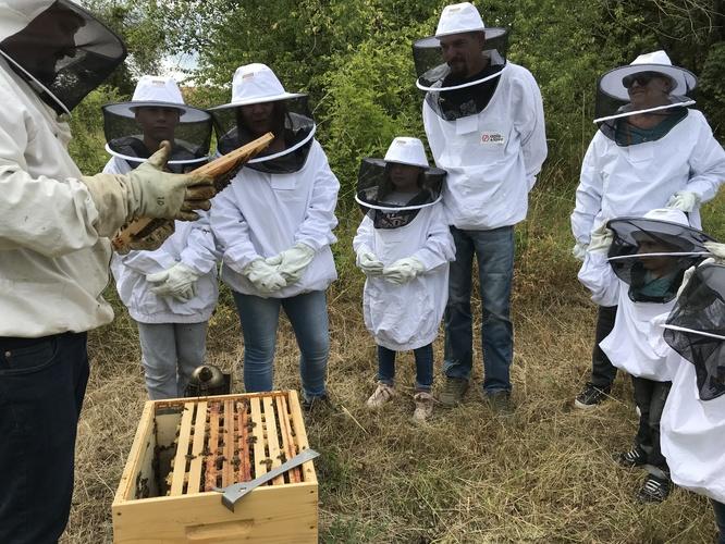 visite de ruches au Fort Aventure