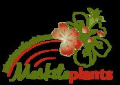 Moskitoplants logo rgvert