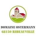Vignette domaine ostermann 64294 0