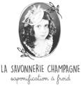 Logo lsc nivgris
