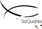 Logo saquana d%c3%a9finitif v2