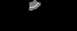 Logotype toni