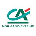 Https   www.ca normandie seine.fr vitrine objcommun dciv2 img logo creditagricole v16
