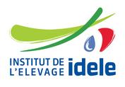Logo idele rvb
