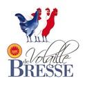 Logo volaile dinde bresse 1024x475