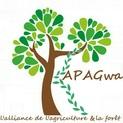 Logo apagwa