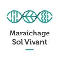 Logo msv