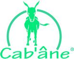 Cab'ane logo vert q