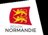 Logo region couleur digital polygone