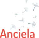 Logo 2017 rouge gris 300x292