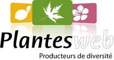 Logo plantes web
