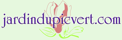 Logo pic vert.com