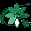 Logo cnpmai 2014carre%cc%81