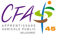 Logo cfa 45