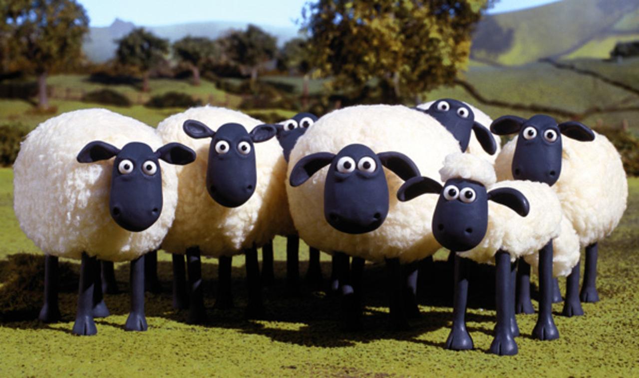 Moutons paris tondeuse