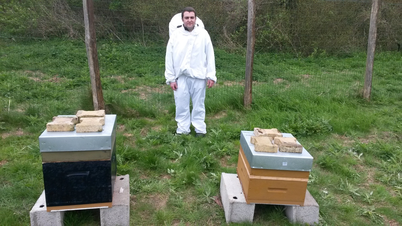 apiculteur a samer