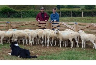 Emeline et walter lavolet eleveurs d agneaux a sainte helene phot b c %28clp%29 1462194157