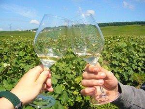 Deux flutes vigne ko