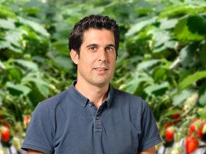 Franck vila fond vegetal