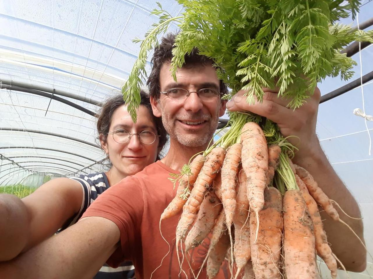 Nadine mat carotte