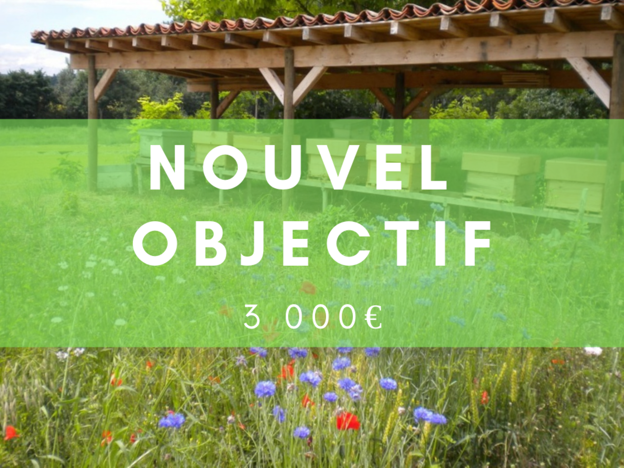 Nouvel objectif frederic