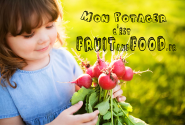 Mon potagercestfruitandfoodmiimosa3