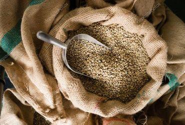 Http  st2.depositphotos.com 1751039 6557 i 950 depositphotos 65573765 stock photo raw coffee beans seeds bulk