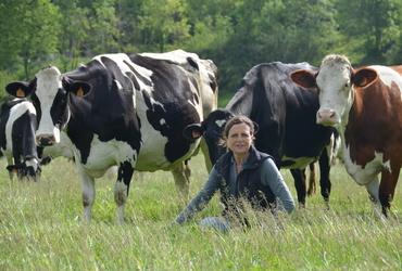 Des hommes   des vaches iii