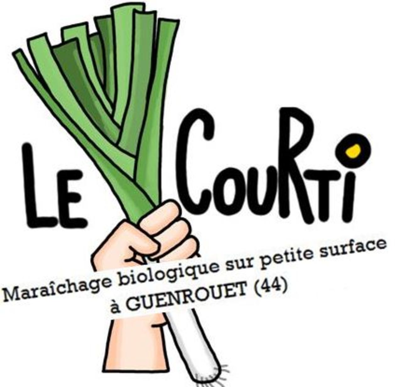 Logo courti crow guenrouet bis