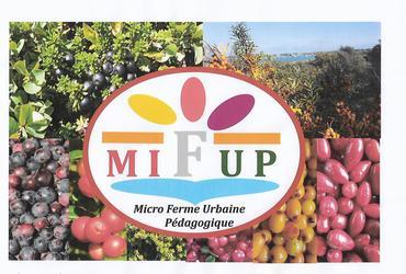 Mifup photo debut facebook 2